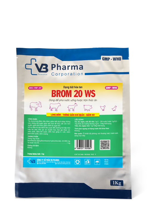 BROM 20 WS